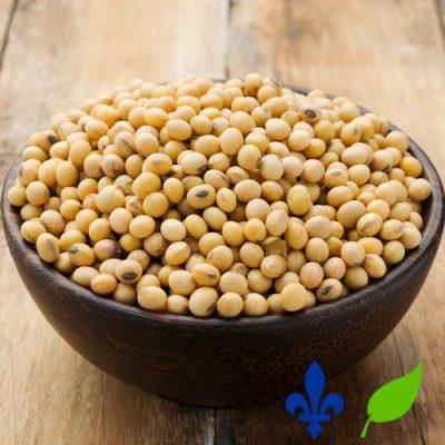 haricots de soya