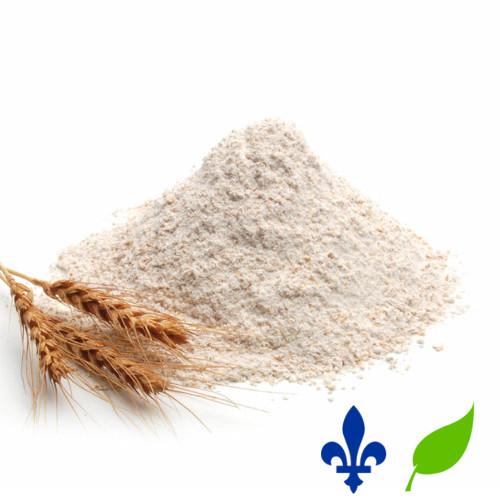 farine de blé intégrale bio